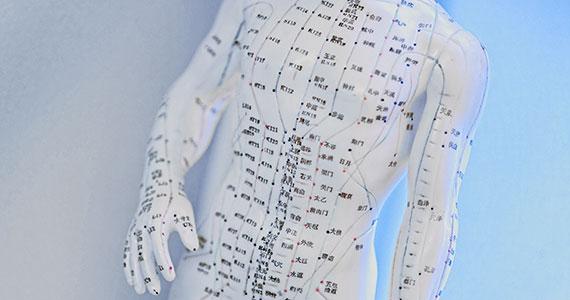 Eine Kunststofffigur auf der die menschlichen Meridiane eingezeichnet sind.